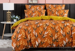 Постельное белье Фрида (оранж)